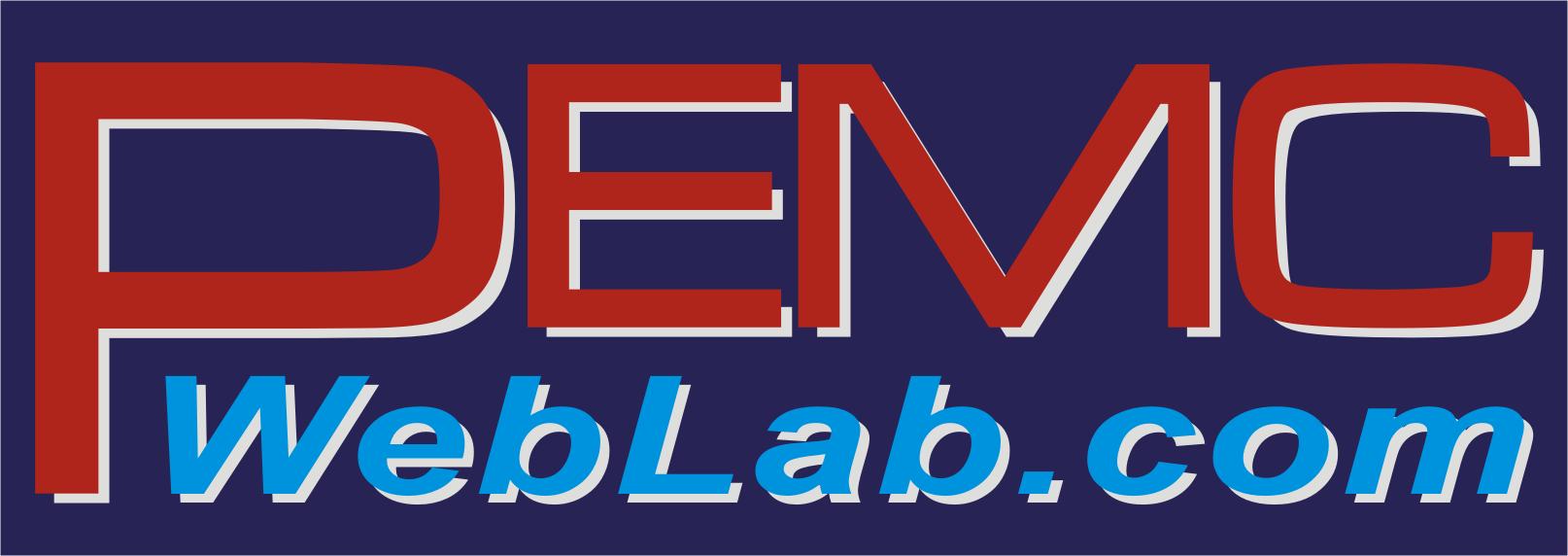 Online interactive laboratories!